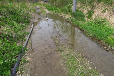 おわ〜! 道が水浸しだ〜。 な...