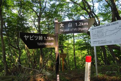 春岳山への分岐です。ヤビツ峠と...