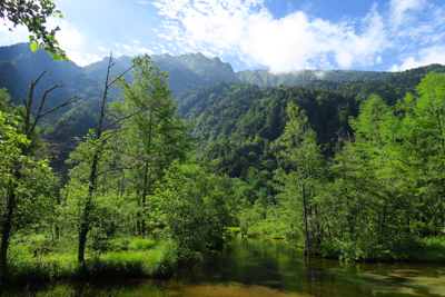 田代池から六百山方面。...