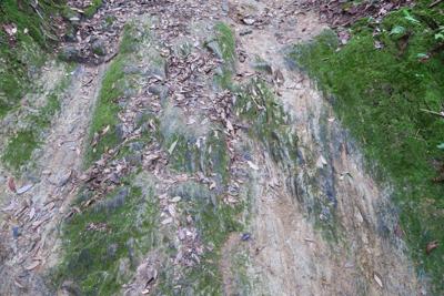 ここの地面は自然の岩なのだろう...