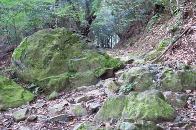 道を遮る大岩。...