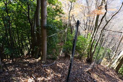 運良く鹿柵は、稜線を遮るように...