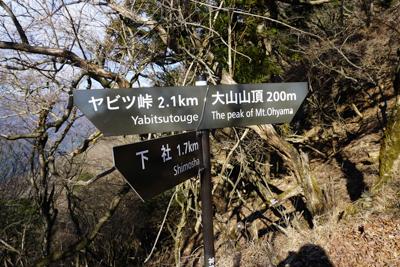 山頂で30分ほどブラブラして下...