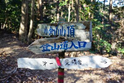 今度は登山道入口方向に進んでみ...