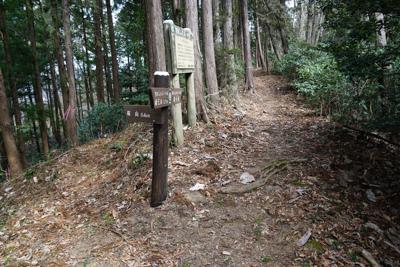 桜山への分岐。今回はスルー。...