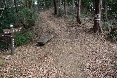 桜山からの合流地点にもベンチが...