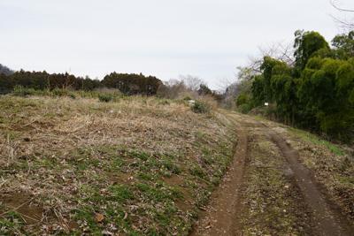 農道のような所に出た。...