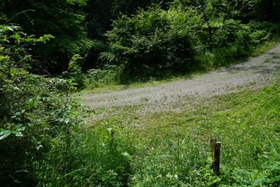 ・・・大垂水峠の少し手前で林道...