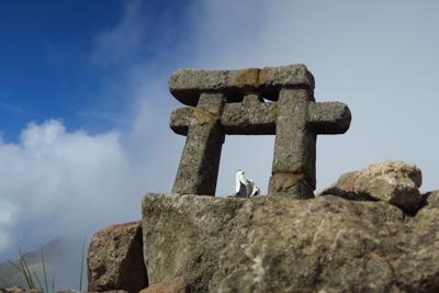 山頂に小さな鳥居があった。...