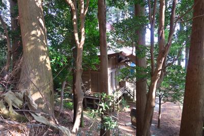 七沢浅間神社から山頂まではほん...