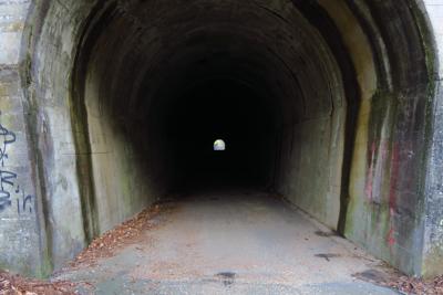 他にも街灯の無いトンネルはある...