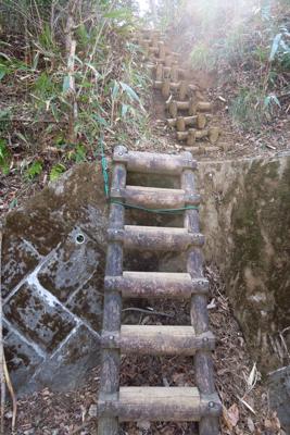 はしごを登って少し進むと・・・...