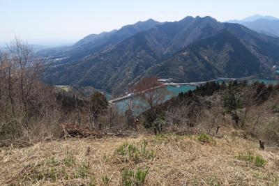 南山から丹沢前衛の山並みを見る...