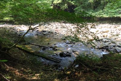 ・・・げっ! また川だ。...