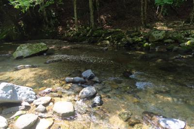 ・・・川幅は広いけど、深さもそ...
