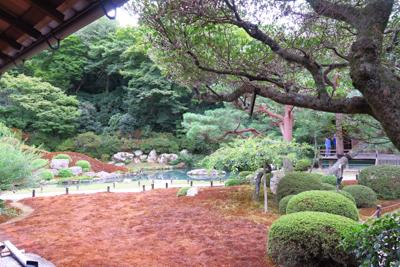 青蓮院門跡のお庭。...