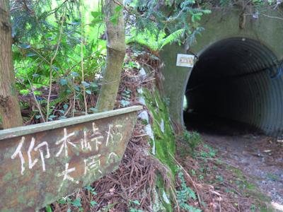 トンネル?...