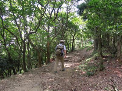 気持ちの良い山歩きを満喫中。...