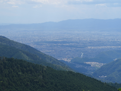 確かに京都御所が見える。...