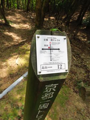 京都一周トレイルでは真っ直ぐを...