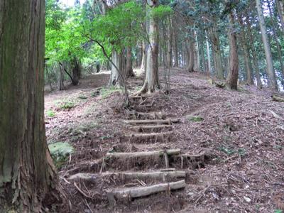 一度下って、再び急な坂を登り返...