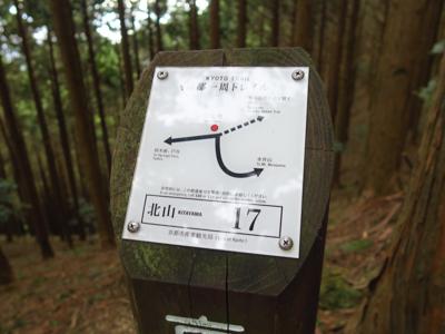 京都、北山と言えば・・・...
