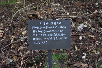 ・・・やたら地質に関する解説板...
