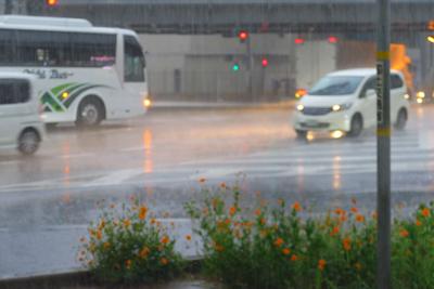 うわ〜、土砂降りの雨だ。傘は持...