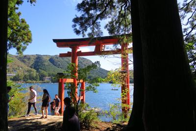 箱根神社の鳥居です。...