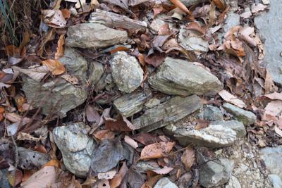 う〜ん、岩が丹沢とは違うような...