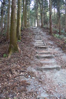 階段が多いですが、外秩父七峰縦...