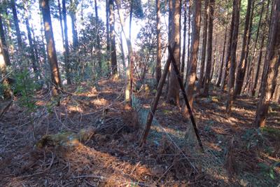 しばらく下ると鹿柵がある。踏み...