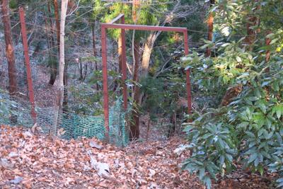 あれ? 再び鹿柵の扉だ。とりあ...