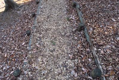 ルート上には木のチップが敷いて...