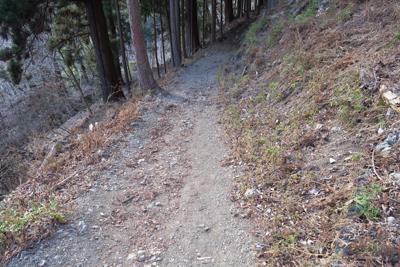 ん? 道が狭くなって登山道っぽ...