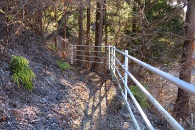 ・・・ここからが本格的な登山道...