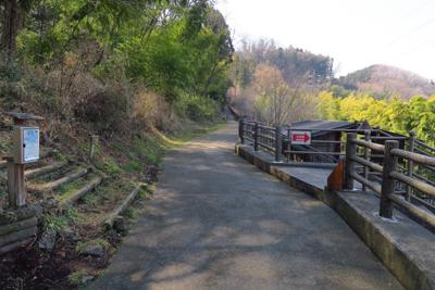 山の中腹にある散策道を進むと左...