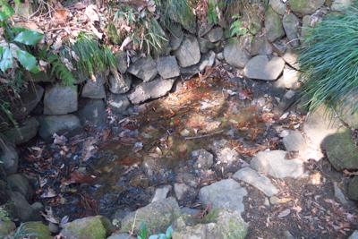 ・・おそらく前日の雨で多少水た...