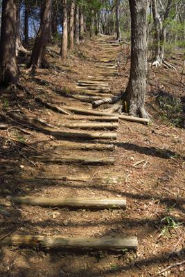 ・・・階段を登って・・・...