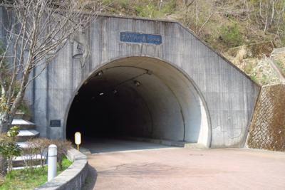 ・・・トンネルを抜けると周回道...