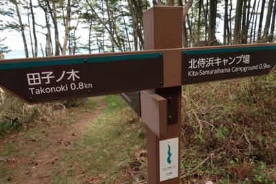 北侍浜キャンプ場まで0.9km...