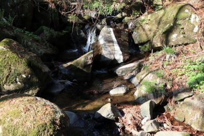 谷底には小川が流れている。まぁ...